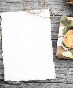 Papier Produkte / Ärzterollen